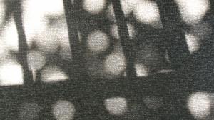 Kaiga0483
